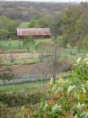 Long View Farm1