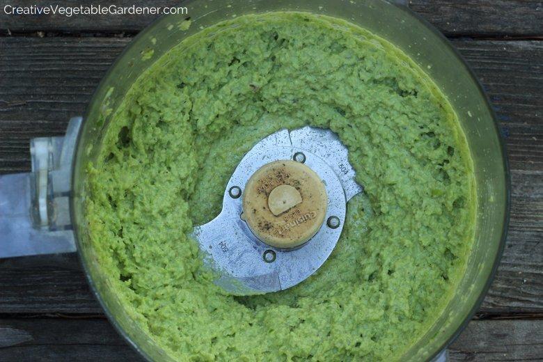 Easy-Garlic-Scape-Pesto-Food Processor