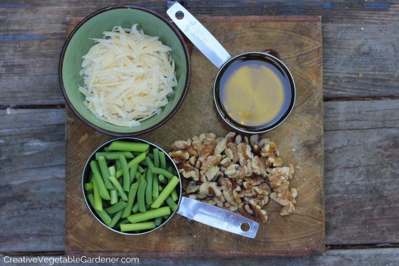 Garlic-Scape-Pesto-Recipe Ingredients